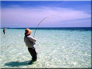 bahama01s