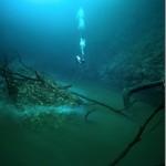 セノーテ・アンジェリータ。そこは「水中で」釣りができる、摩訶不思議な場所。