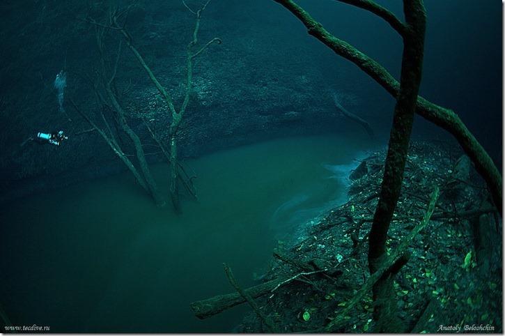 cenotecavediving