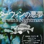 「ダーウィンの悪夢」を見てみた。ナイルパーチを取り巻くアフリカの現実。