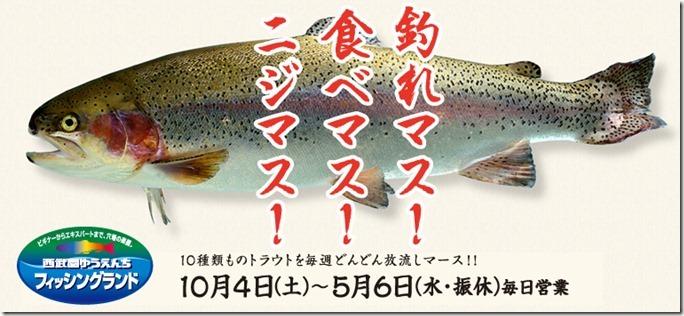 cnt_img_fishing_mv