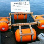 琵琶湖のバスやギル、2006年の半分に・・・。回収ボックスが成果を上げている模様(+_+)