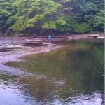 房総ダムに釣り行って来た!コテンパン!!