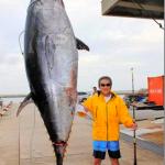 松方弘樹、72歳。自己最高記録の361キロ巨大マグロを釣り上げる!!