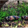 Panzer_banna.jpg