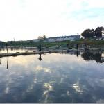 有名管理釣り場「吉羽園」に初めて行ってきた。カンタンには食ってくれなかった。