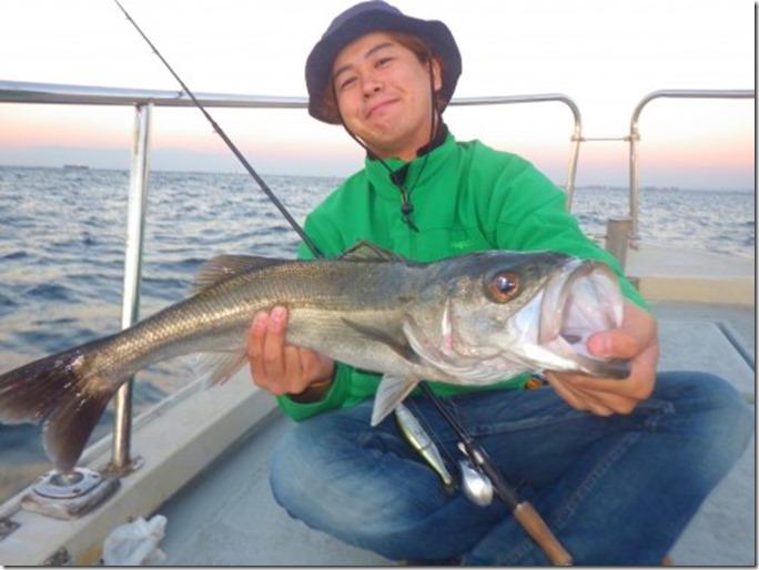 FISH8113-e1446574298355
