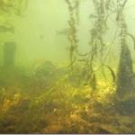 日本初、琵琶湖湖底に水中遺跡! 地震で水没!?