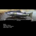 デュオ「オニマス」、2016年1月発売。ようやく公開された水中アクション。