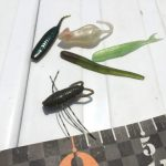 【亀山バス釣り】1.5日で20本、46cm!シャッド系のトゥイッチで楽しんだ泊りがけ亀山フィッシング