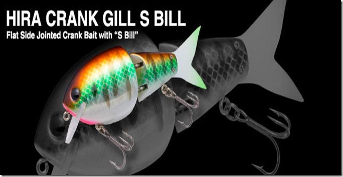 hiracrank_gill_s_bill