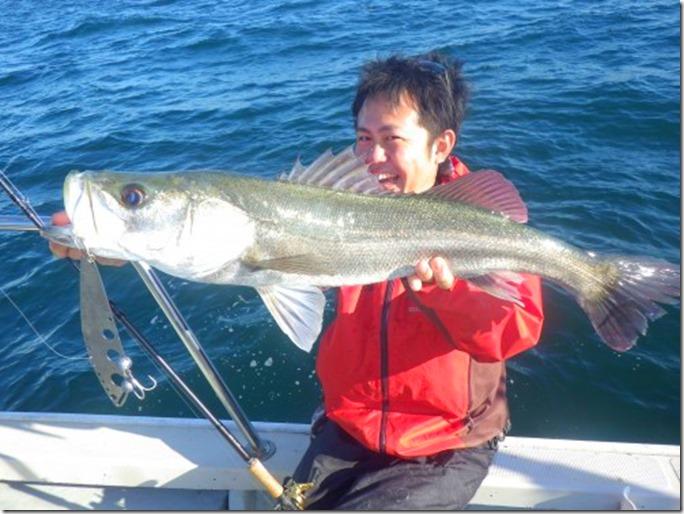 FISH8111-e1446574004923