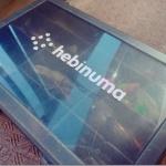 3月20日(日)、「第2回 hebinuma オフ会」やります。