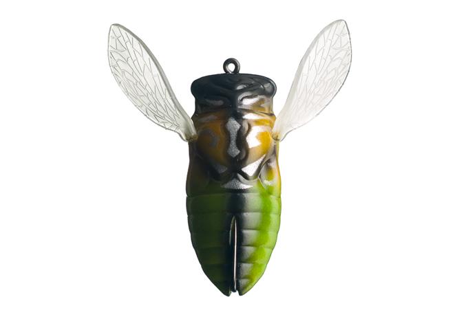 cover_cicada_06